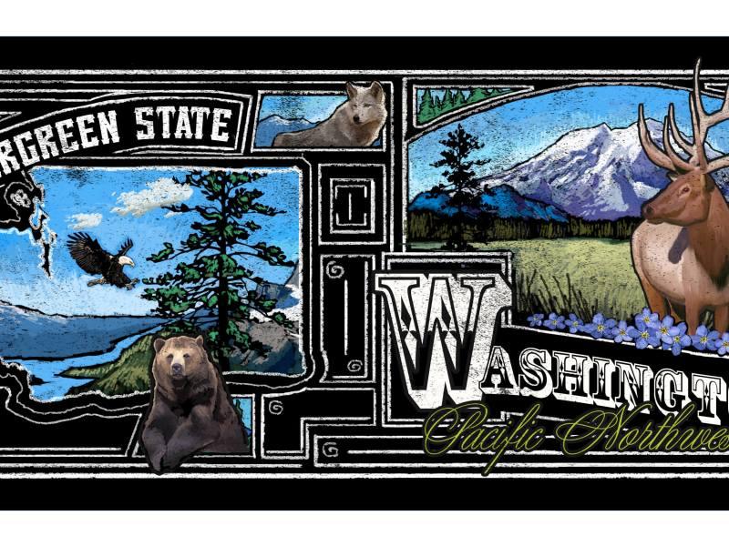 Evergreen State Chalkboard Wrap
